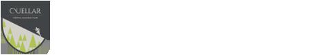 retina-cuellar-logo